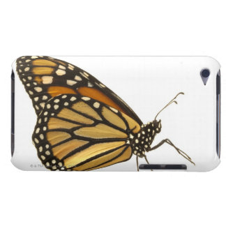 Monarch butterfly iPod touch Case-Mate case