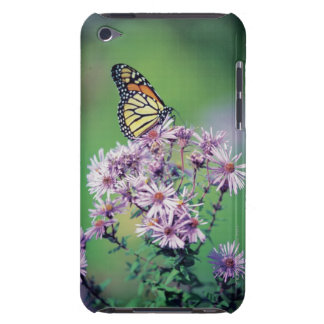 Monarch Butterfly iPod Touch Cases