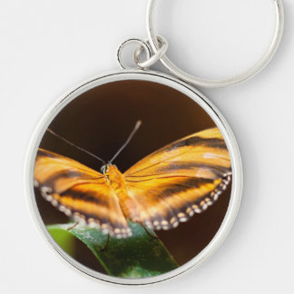 Monarch Butterfly Silver-Colored Round Key Ring