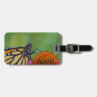 Monarch Butterfly Luggage Tag