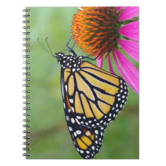 Monarch Butterfly Notebook