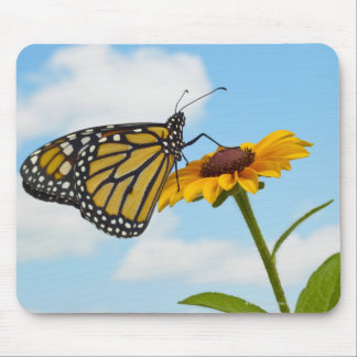 Monarch Butterfly on a Black Eyed Susan Mouse Mat