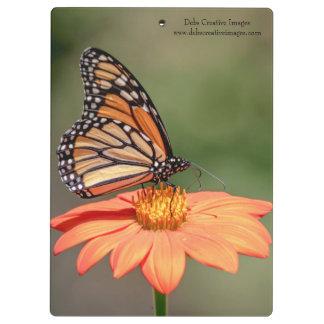 Monarch Butterfly on an orange flower Clipboard