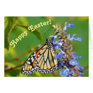 MONARCH BUTTERFLY ON FLOWER/EASTER GREETING CARD