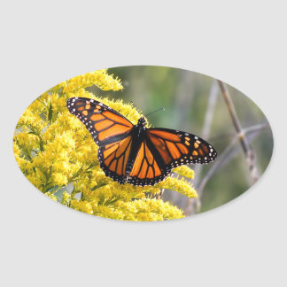 Monarch Butterfly on Goldenrod Oval Sticker