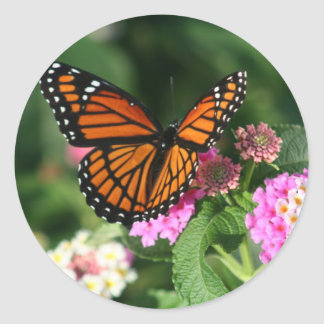 Monarch Butterfly on Lantana Flower Classic Round Sticker