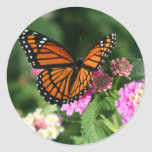 Monarch Butterfly on Lantana Flower Round Sticker