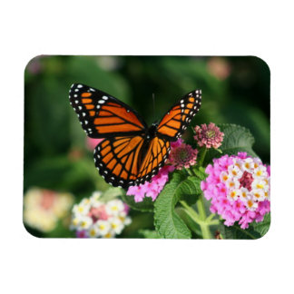 Monarch Butterfly on Lantana Flowers.Magnet Rectangular Photo Magnet