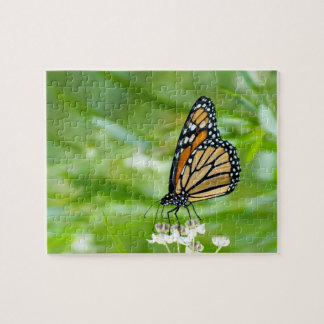 monarch butterfly on milkweed photo puzzle