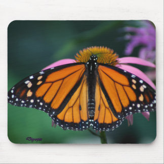 Monarch Butterfly on Purple Cone Flower Mouse Pad