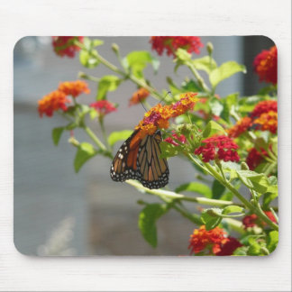 Monarch Butterfly on Red Butterfly Bush Mouse Pad