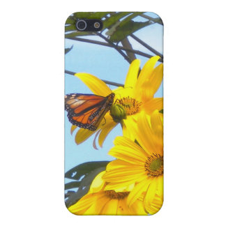 Monarch Butterfly on Sunflower iPhone4 case iPhone 5/5S Case