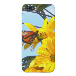 Monarch Butterfly on Sunflower iPhone4 case iPhone 5 Cover