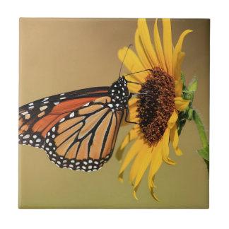 Monarch Butterfly on Sunflower Tile