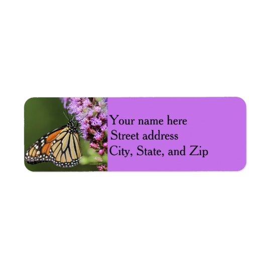 Monarch butterfly profile