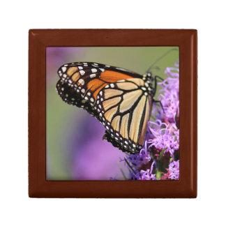 Monarch butterfly profile small square gift box