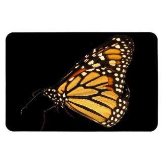Monarch Butterfly Rectangular Photo Magnet