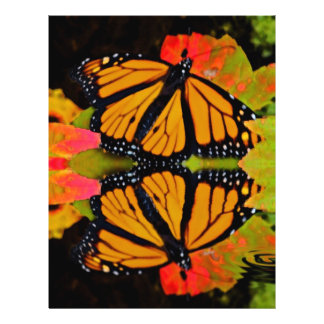Monarch Butterfly Reflection Flyer