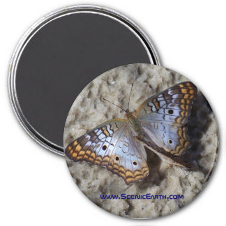 Monarch Butterfly Refrigerator Magnet Button