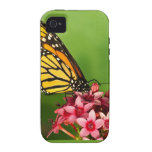 Monarch Butterfly  Side View Vibrant Photograph Case-Mate iPhone 4 Cover