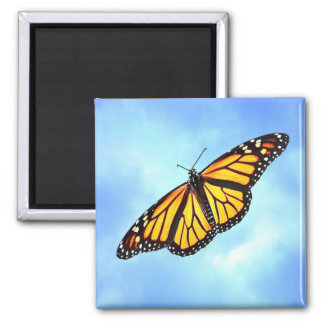Monarch Butterfly Square Magnet
