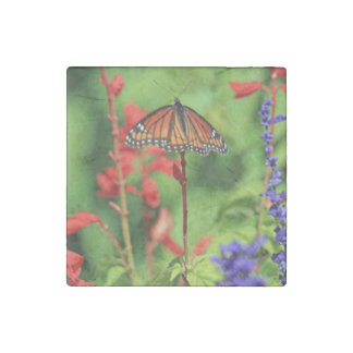 Monarch Butterfly Stone Magnet