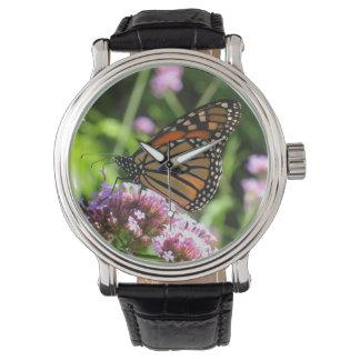Monarch Butterfly Watch