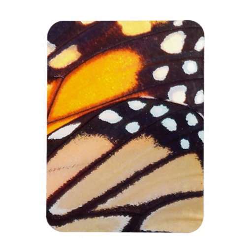 Monarch Butterfly Wing Rectangle Magnets