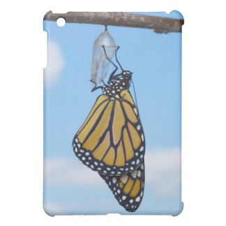 Monarch Butterfly, with Chrysalis iPad Mini Cover