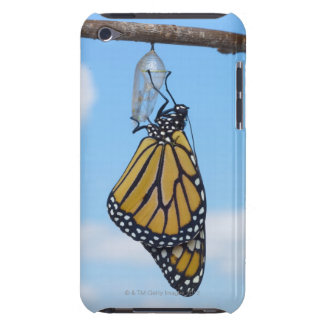 Monarch Butterfly, with Chrysalis iPod Touch Cover