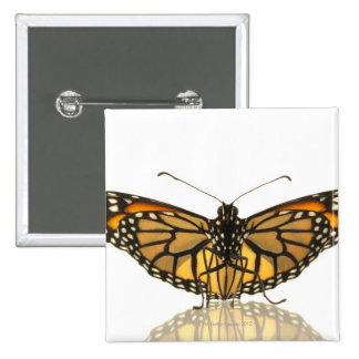 Monarch butterfly with wings spread 15 cm square badge