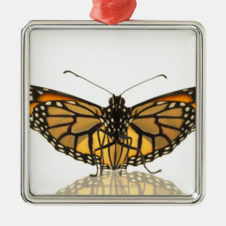 Monarch butterfly with wings spread Silver-Colored square decoration