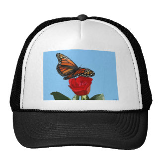 Monarch Cap