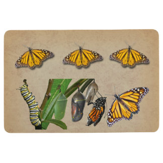 MONARCH LIFE CYCLE FLOOR MAT