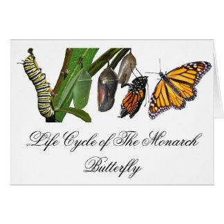 MONARCH LIFE CYCLE GREETING CARD