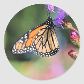 Monarch lunch classic round sticker