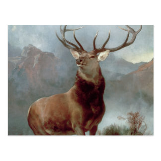 Monarch of the Glen, 1851 Postcard