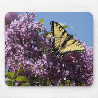 Monarch on Butterfly Bush Mouse Pad