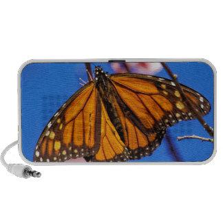 Monarch on Cherry Blossom Travelling Speaker