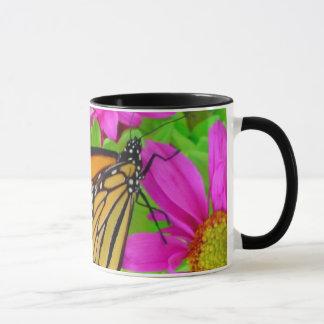 Monarch on Daisy Mug
