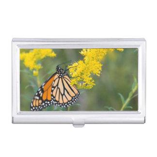 Monarch on Goldenrod Business Card Holder