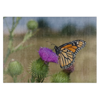 Monarch on pasture Thistle Prairie Ridge Cutting Board