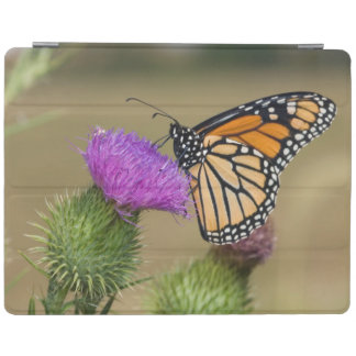Monarch on pasture Thistle Prairie Ridge iPad Cover