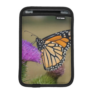 Monarch on pasture Thistle Prairie Ridge iPad Mini Sleeve