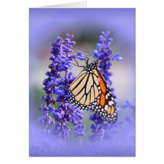 Monarch on Salvia - Butterfly Greeting Card