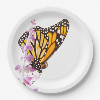 Monarch perched on lavender paper plate