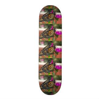 Monarch Twins #1-skateboard Skate Board Decks