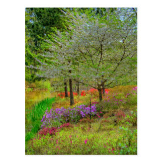 Monet Landscape Postcards