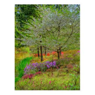 Monet Landscape Postcard