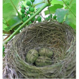 Money Nest Eggs Standing Photo Sculpture